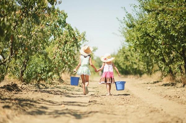foto anak membawa air... anak di hutan... bayi hutan...