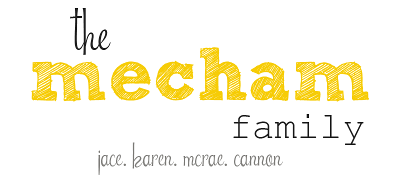 the mecham family