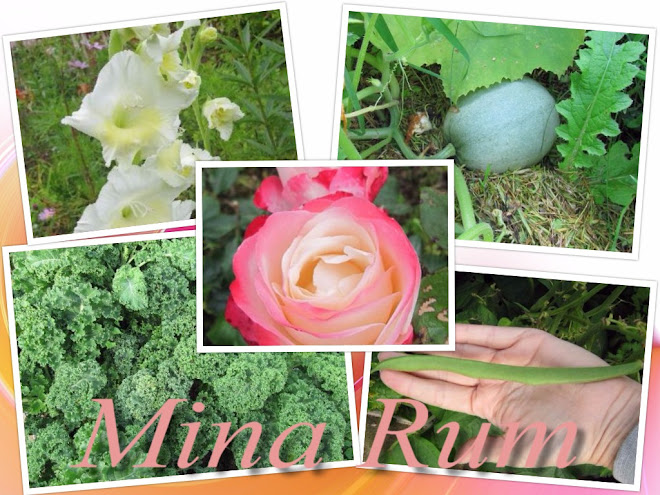 Mina Rum