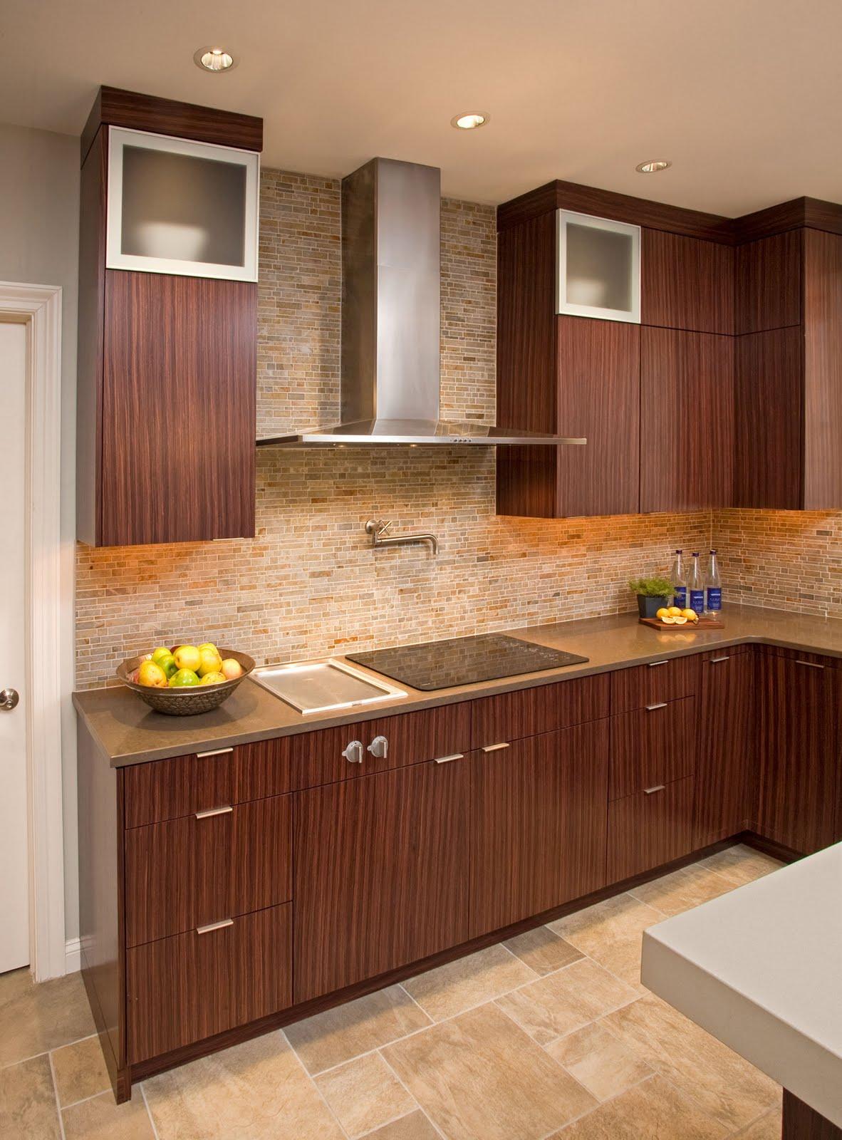 Range Hood Kitchen Faber Rangehoods Stunning Kitchen Using The Faber Diamante Wall