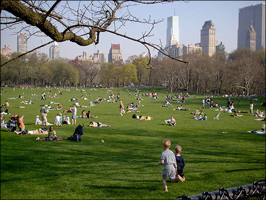 http://3.bp.blogspot.com/-54p1bP1qEnM/ThoczghZCdI/AAAAAAAAAEc/J5wgGwS3s34/s1600/central_park.jpg