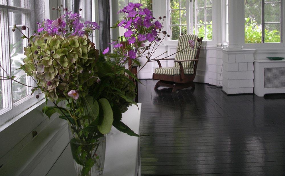 Decora interi plantas de interiores cuidados - Plantas de interior cuidados ...