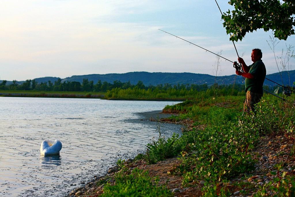 Fishing in croatia and in the neighbourhood carp from for Fishing in croatia