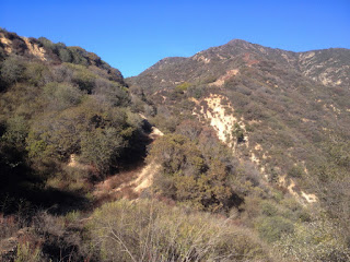 View north from old 2N28 and the saddle between Water Canyon and Roberts Canyon with Silver Mountain (3385') above, Angeles National Forest