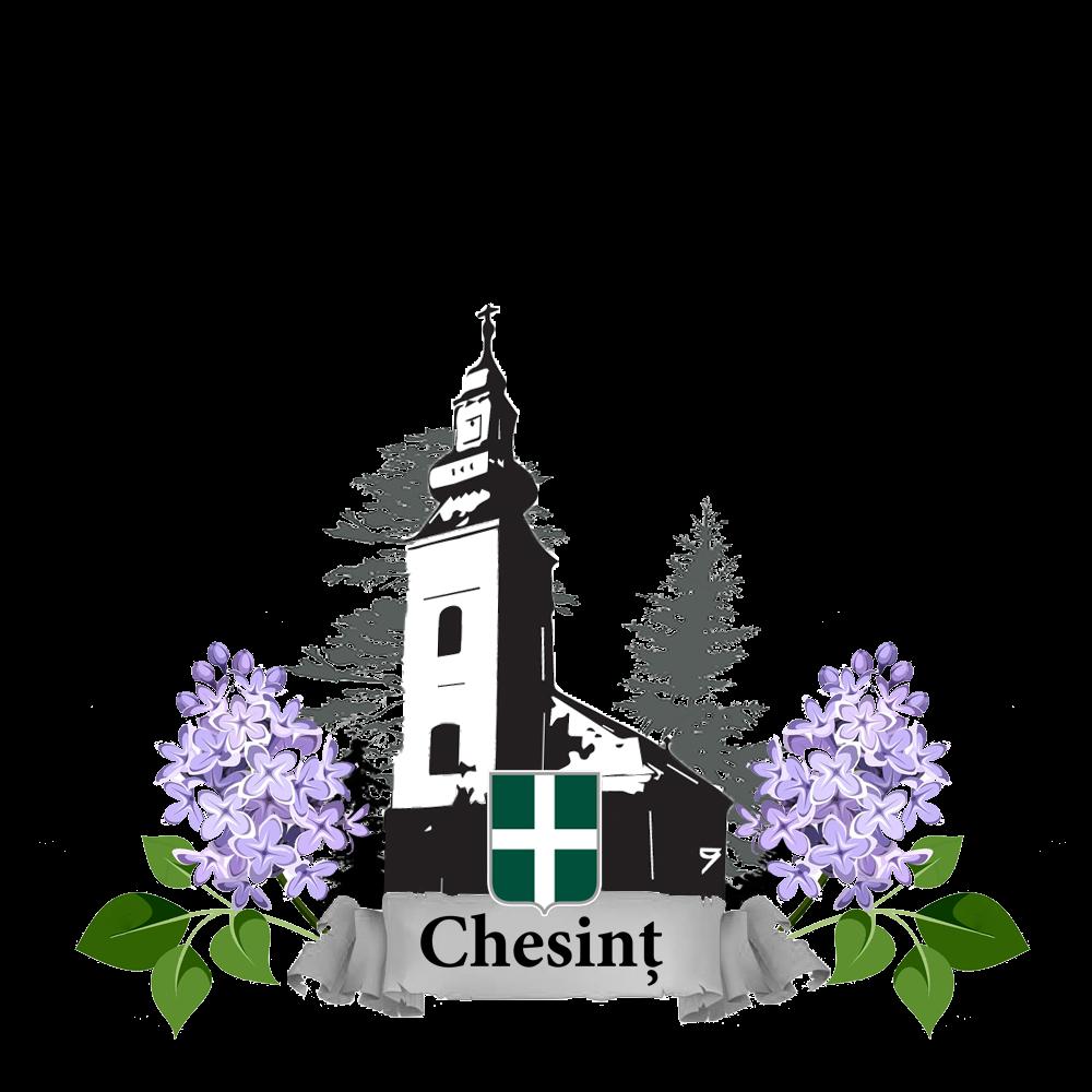 Facebook Satul Chesint