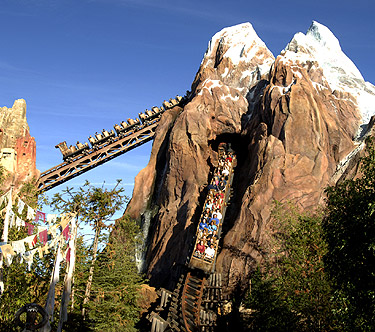 Animal Kingdom Orlando Everest Roller Coast