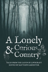 A Lonely & Curious Country