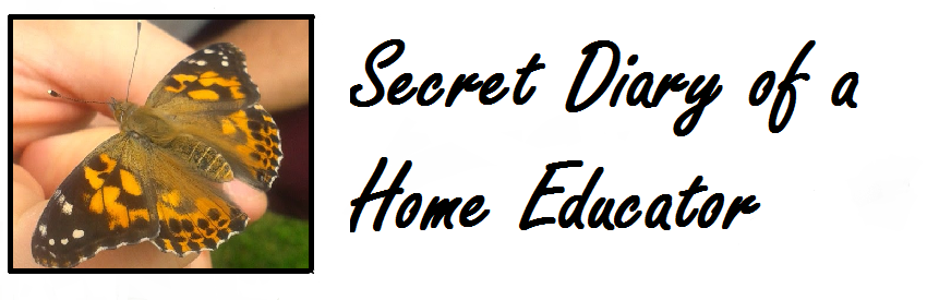 Secret Diary of a Home Educator