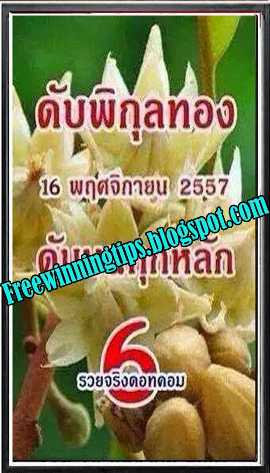 Thai Lottery Sure Cut Digit 16-11-2014