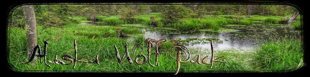 Alaska Wolf Pack