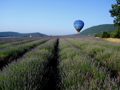 Hot Air Ballooning Provence