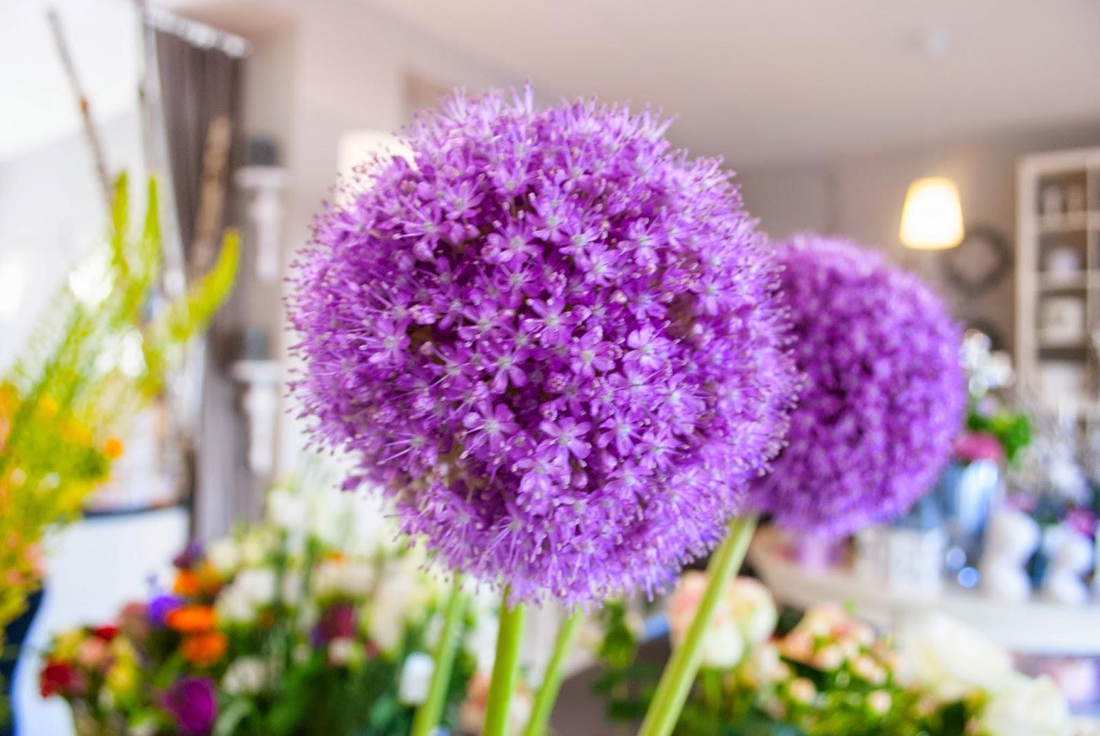 Flowers of the month: Riesenlauch Interior Interieur Blumen Schnittblumen Lifestyle München Minga Munich Blüte Vergiss Mein Nicht Kooperation Hupsis Serendipity