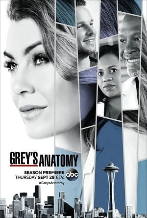 Greys Anatomy - A Anatomia de Grey 14ª Temporada Completa Séries Torrent Download capa
