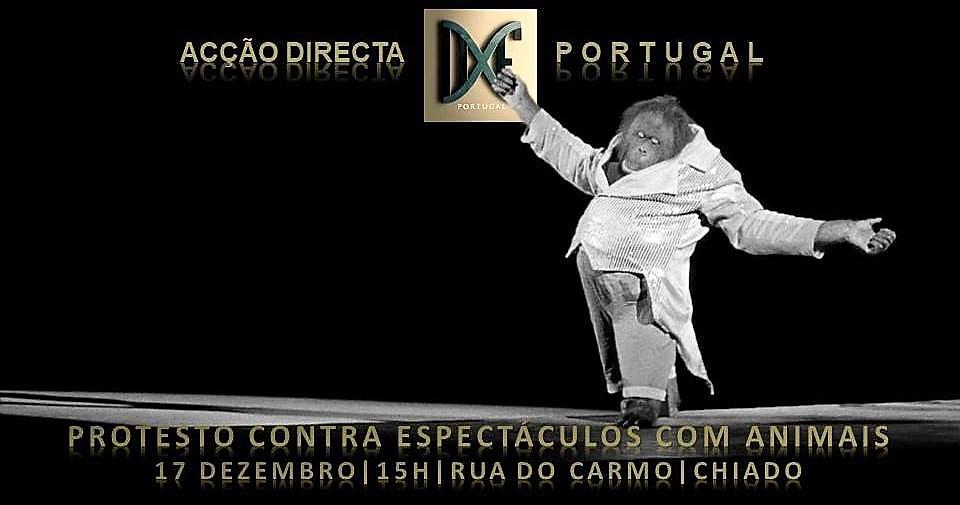 17 de dezembro, 15h: Lisboa