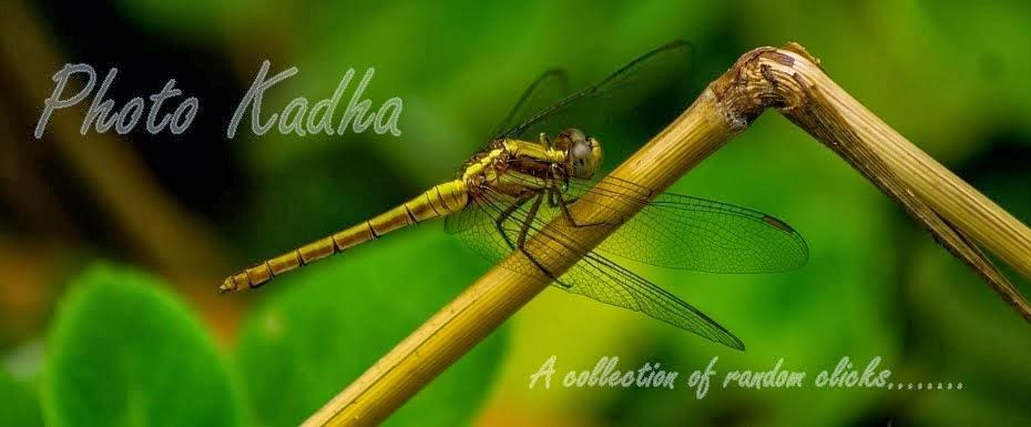 photokadha