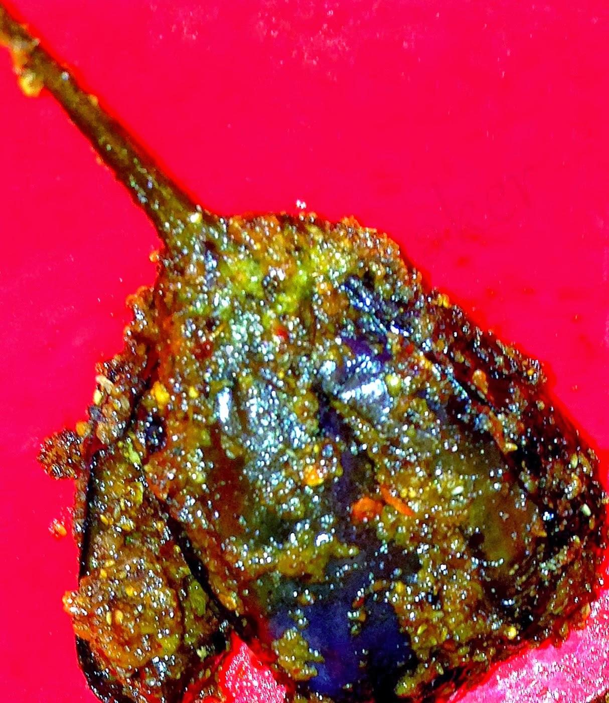 Coriander Stuffed Brinjal ( Gutti vankaya )
