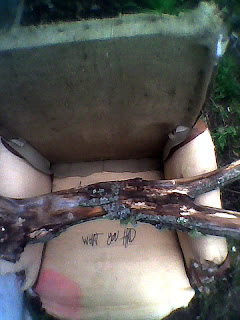This ratty chair was also found on the scene of the crime. What sayeth this forked tongue?