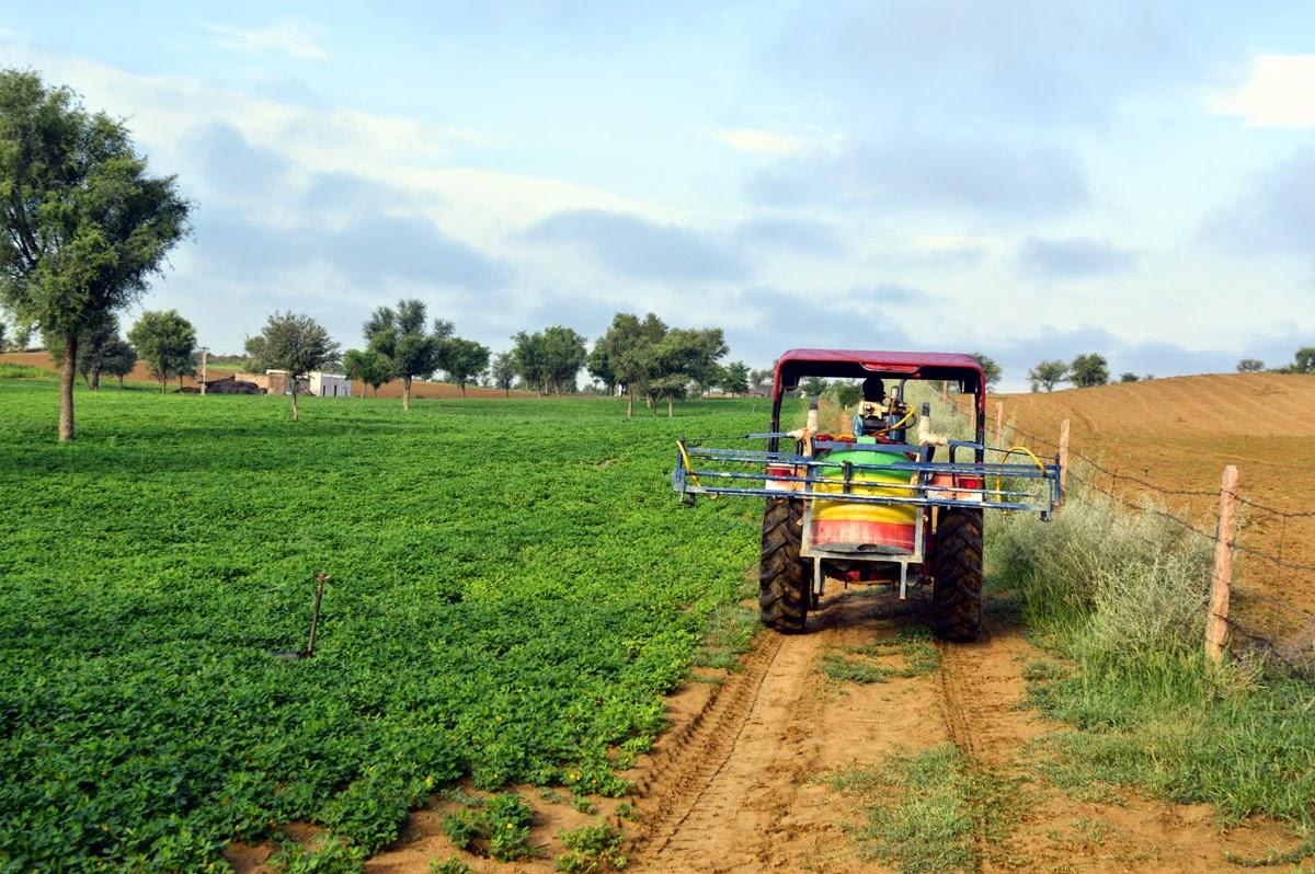 farm tractor groundnut