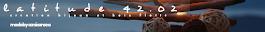 latitude 42.02 créations déco bois flotté - Bijoux