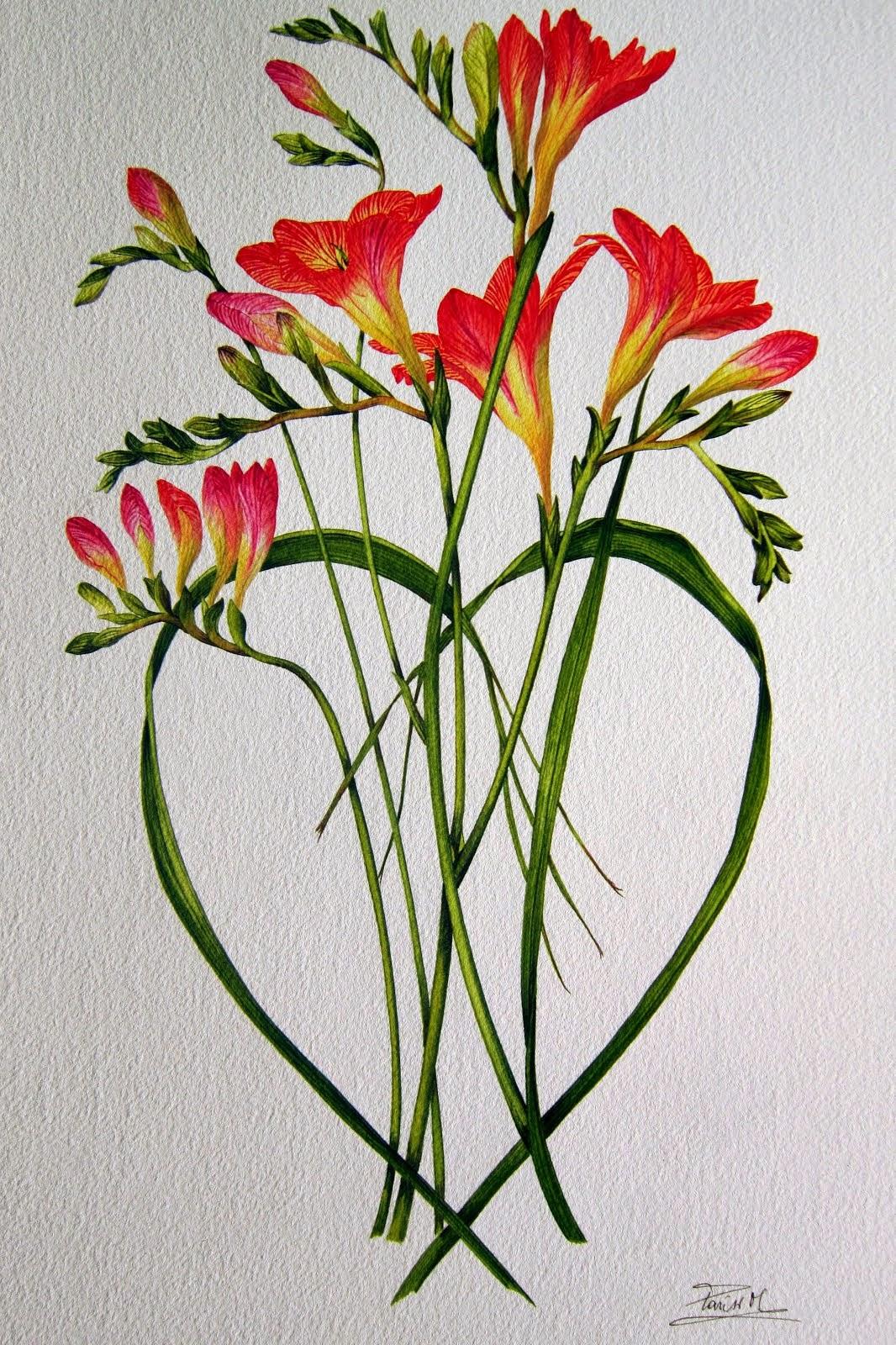 ...sempre fiori...
