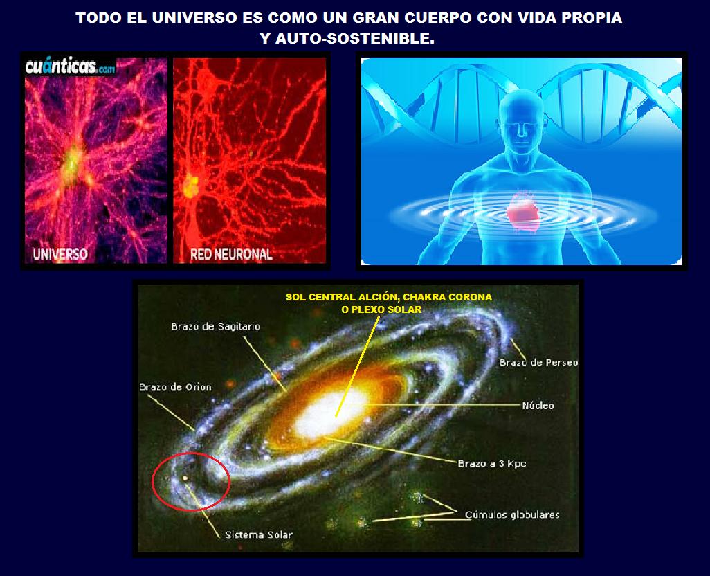 Resultado de imagen de Tenemos conexión directa con el Universo porque, Universo somos