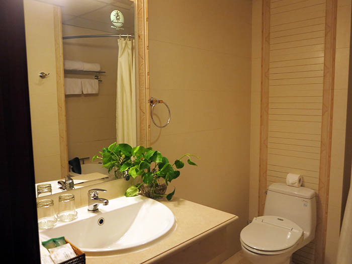 Hoang Hai Long toilet