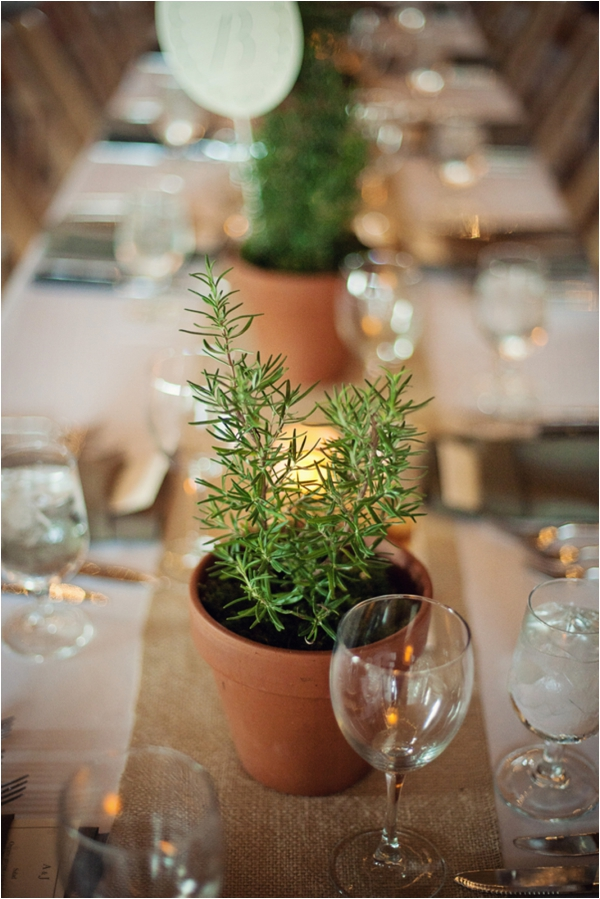 Rustic Wedding by Cuppa Photography (http://cuppaphotography.net/) #weddings #rustic #centerpiece