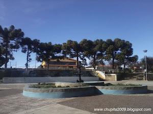 Plaza de Armas Los Sauces.-