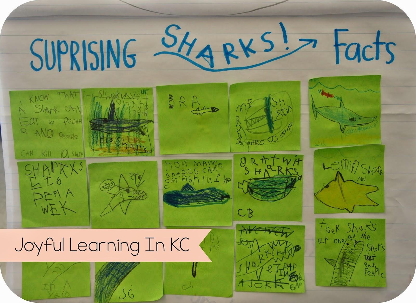 reading response in kindergartn