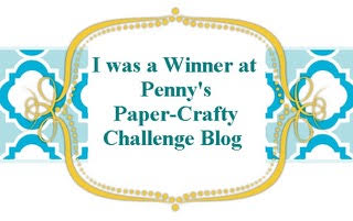 Penny's Challenge #319 Winner