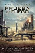 Maze Runner: Prueba de fuego (2015)