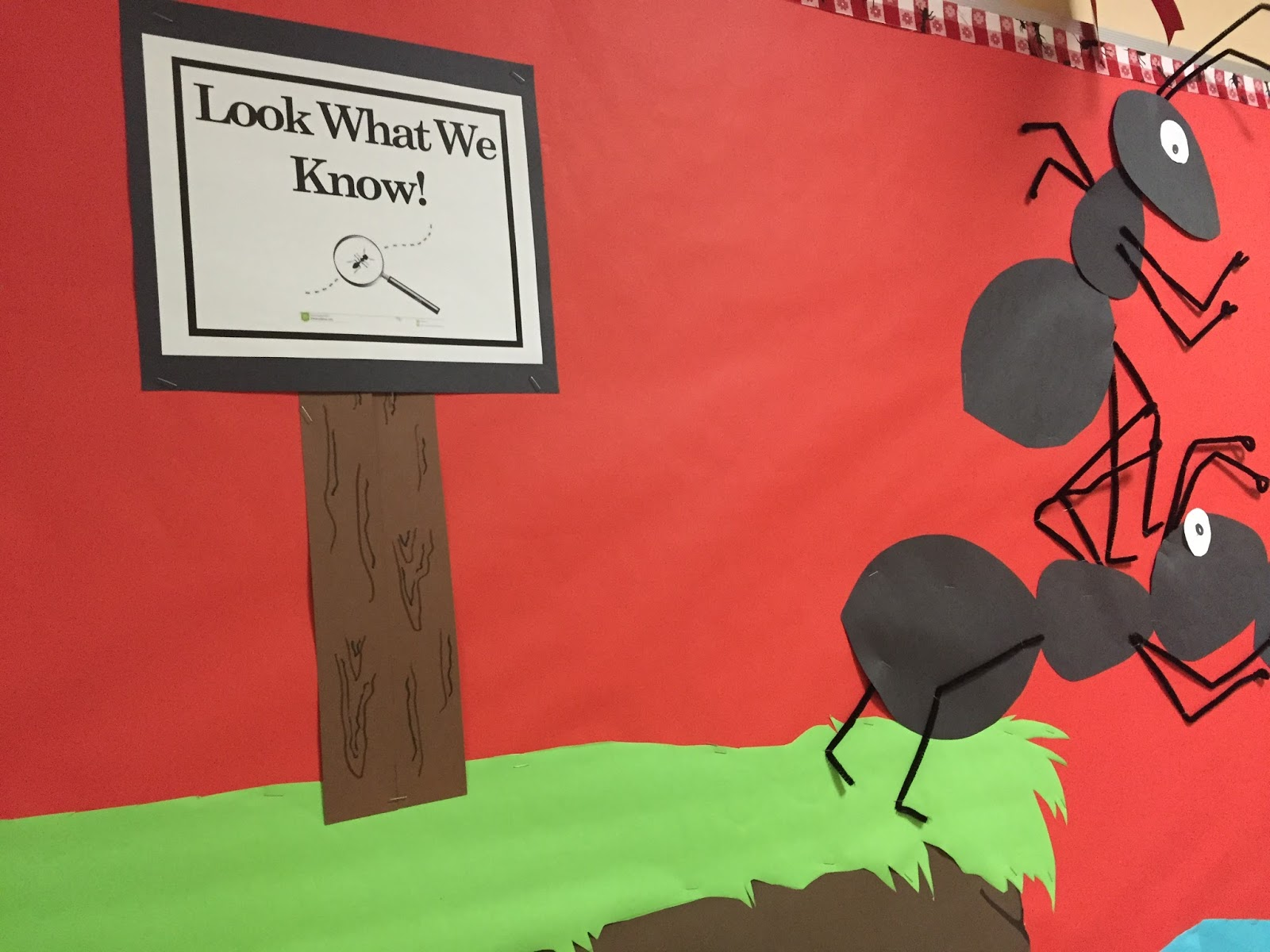 and how are the children anticipate challenge bulletin board we cut all three pieces of each ant from an 11 x 17 inch piece of construction paper the middle section is smaller and the end section is pointier than the