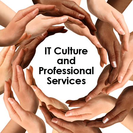 IT Culture and Professional Services