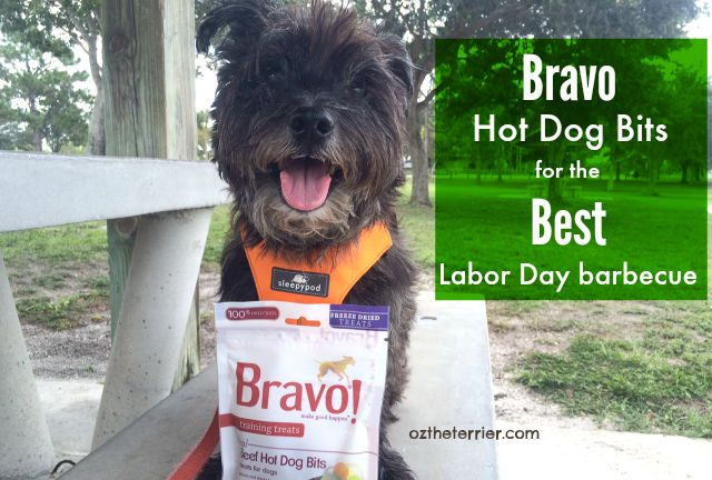 Bravo Hot Dog Bits dog treats are great for pets at Labor Day barbecues