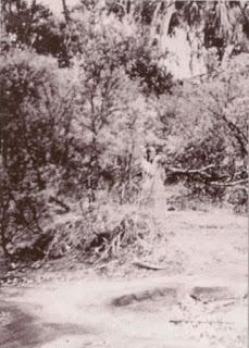 The Watcher 1959