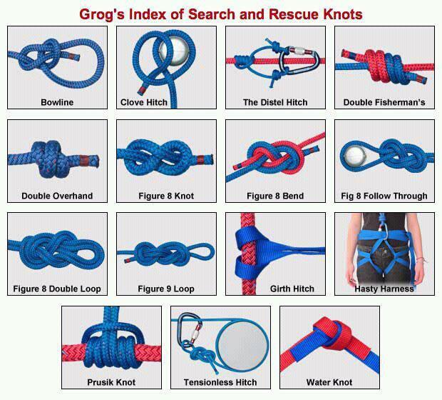 bsa adult knots