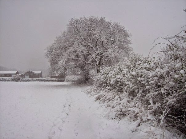 Friars Oak Fields snow 3