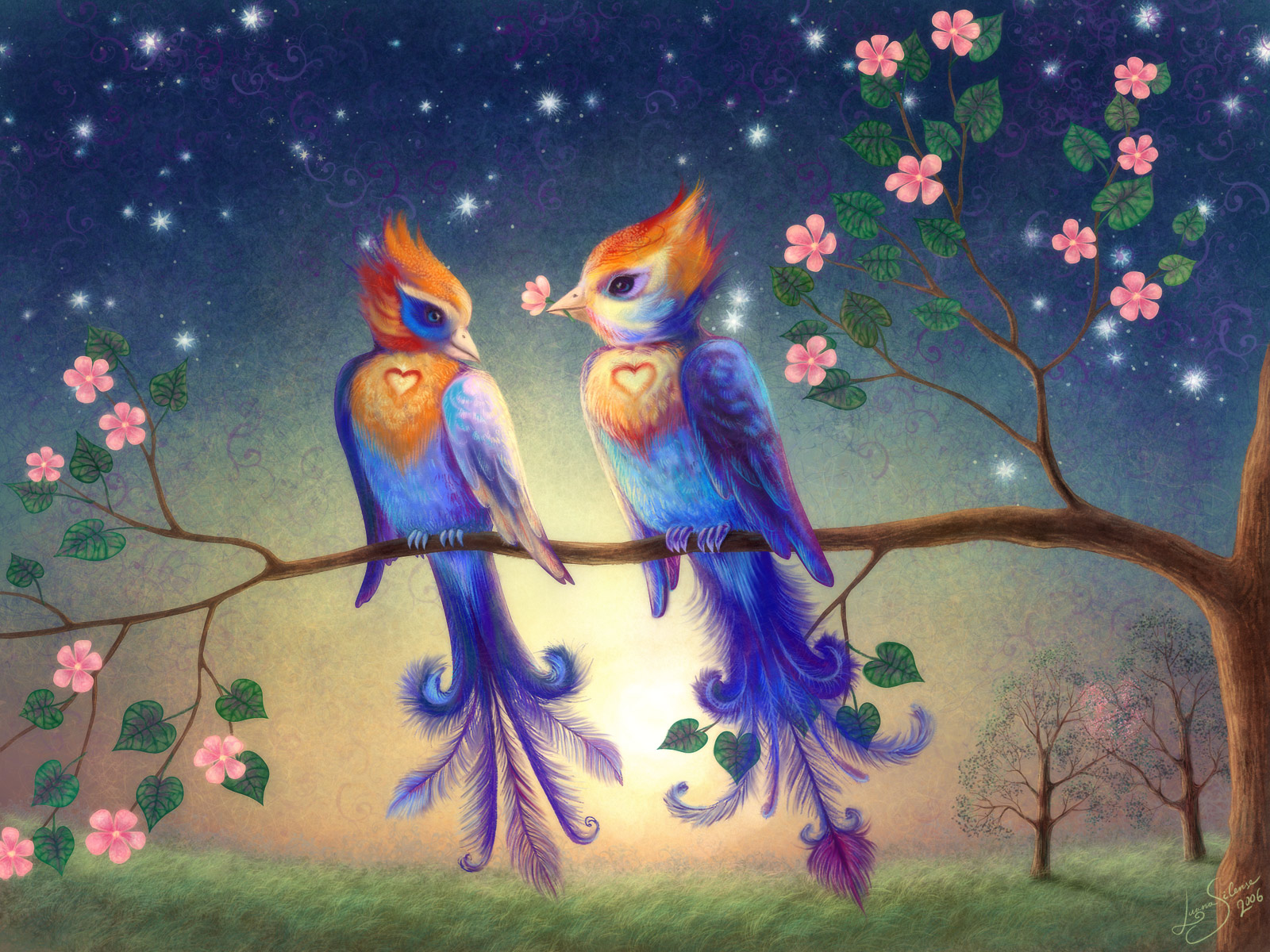 Beautiful Wallpaper About Love : Beautiful love birds wallpapers Funny Animal