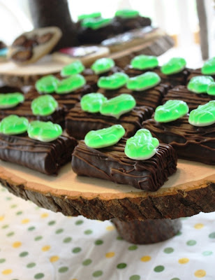 Chocolate Cake Reptile