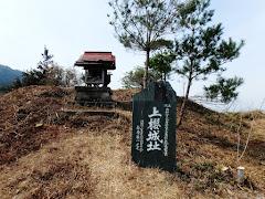 上桜城(徳島県吉野川市川島町桑村)
