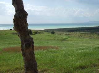 Bild 11: Hang hinunter in das östlich liegende Tal des Platani