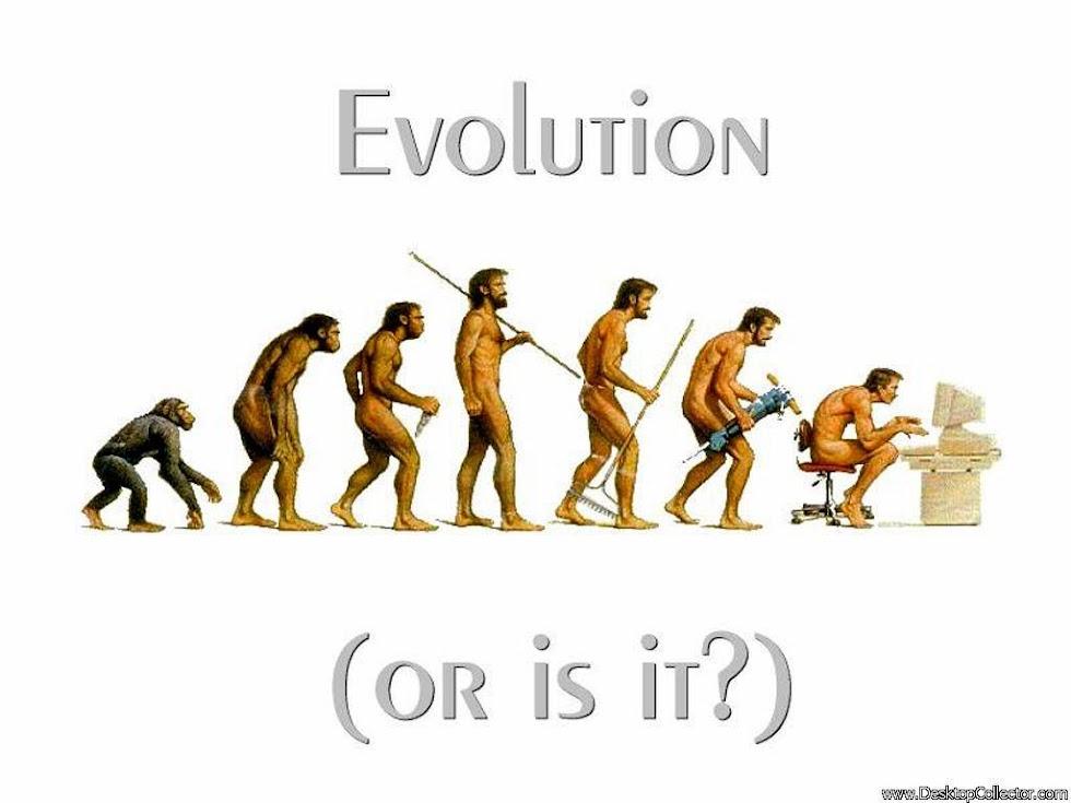 Evrim yazıları