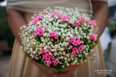 fotograf casament olivella