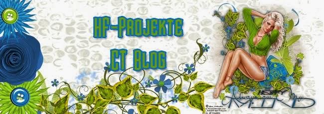 HF-Projekte CT Blog