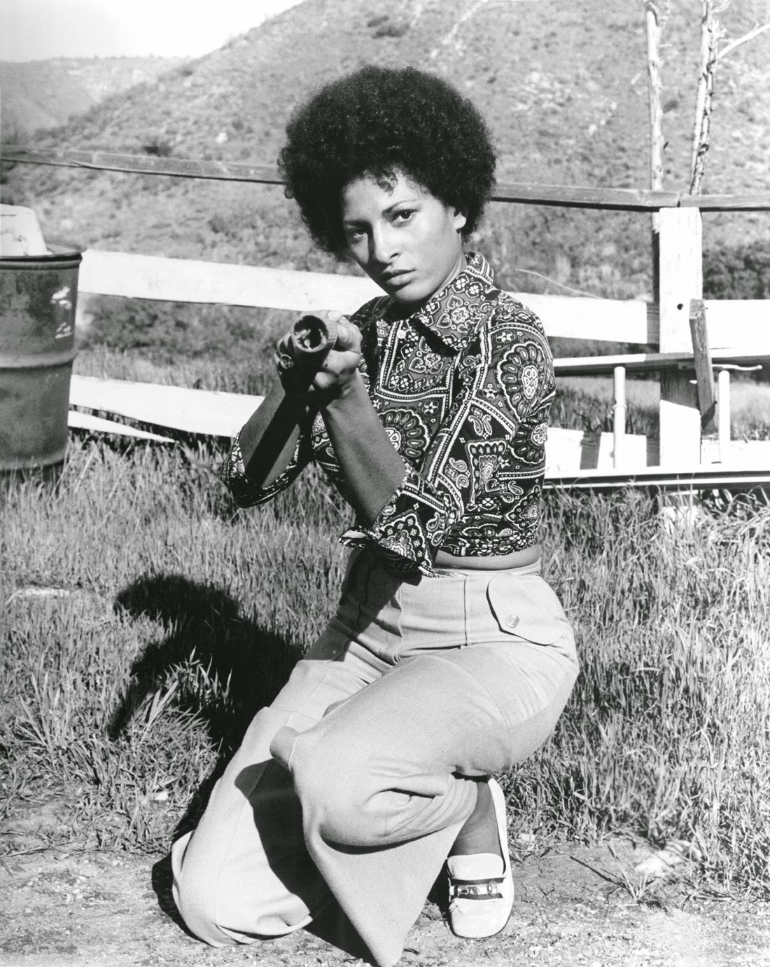 A Slice Of Cheesecake Pam Grier