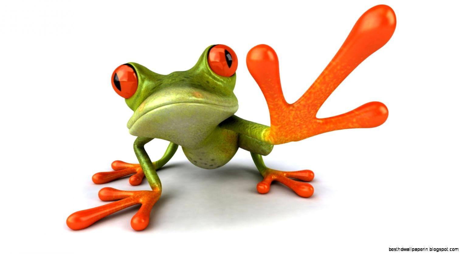 Funny Frog Pictures Wallpapers Free | Best HD Wallpapers