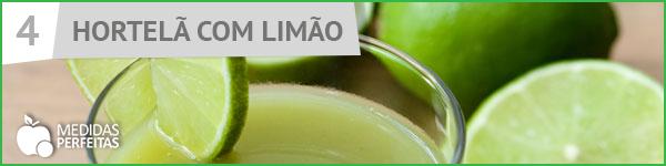 Suco de Hortelã com Limão - Receitas de Sucos Detox