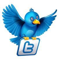 زر تويتر  Twitter