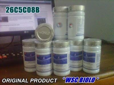 agen resmi wsc biolo online