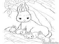 Induk Kelinci Bersama Anaknya Yang Menggemaskan